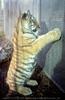 Junger sibirischer Tiger