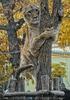 Löwin Kratzbaum