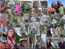 Big Cats Rescue