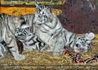 Weiße Tiger Kindergarten 53