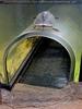 Schildkröte untertunnelt