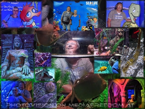 Sea Life Trust: Gabriele P.,Charly Swoboda
