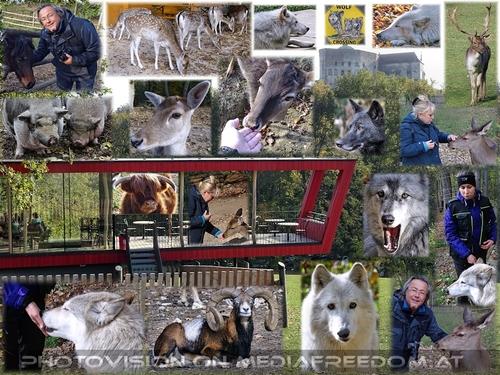 Wildlife: Gabriele P.,Charly Swoboda