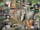 První den - Zoo Brno