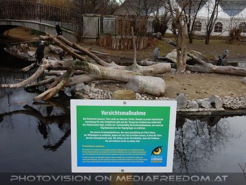 Vorsichtsmaßnahme Vogelgrippe