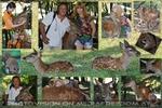 Ein spannender Nachmittag im Institut für Wildtierkunde